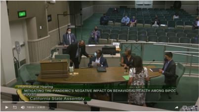 California Assembly Select Committee on the Status of Boys and Men of Color — August 17, 2021 full hearing